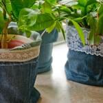 Übertöpfe in Denim – Das Jeans-Upcycling geht weiter!