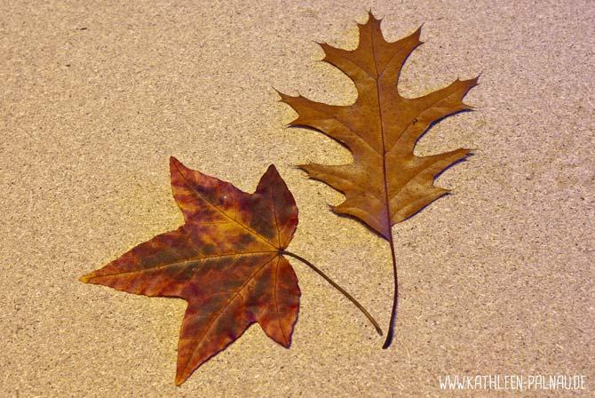 Blättergirlande basteln - Ahorn und Roteiche