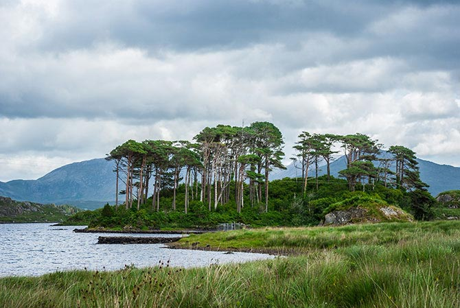 Insel in Connemara