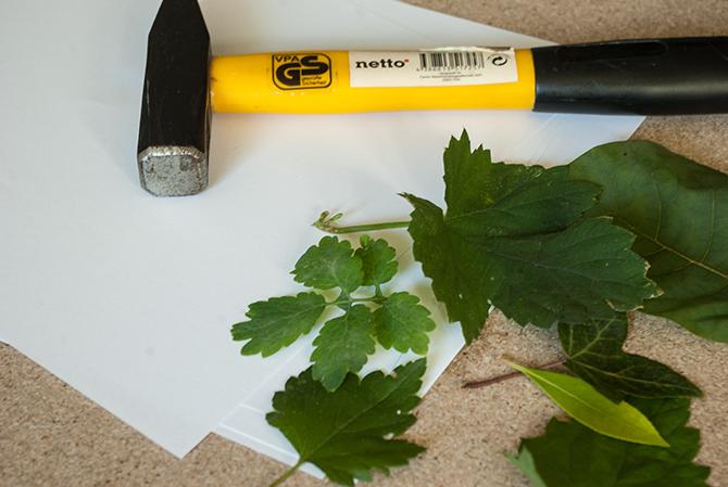 Schritt 1: Blätter sammeln, Materialien bereit legen
