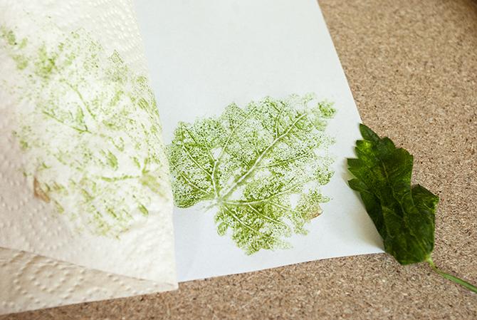 Schritt 4: Küchenpapier und Laubblatt vorsichtig entfernen